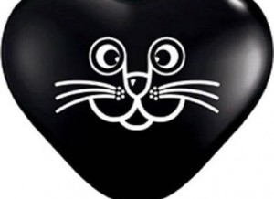 cat face black