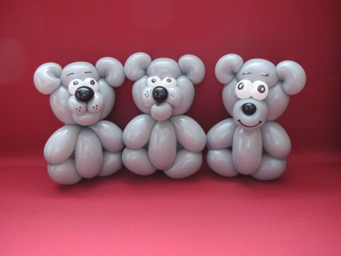 teddy11