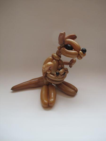 kangaroo3